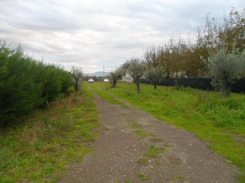 Terreno Agricolo in vendita a Cimitile, 9999 locali, prezzo € 400.000 | Cambio Casa.it