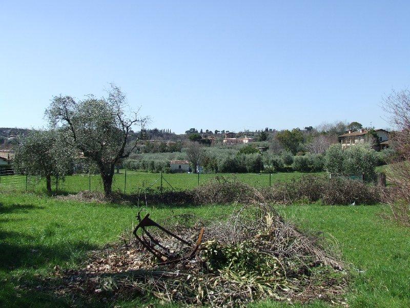 5 T San Felice_2