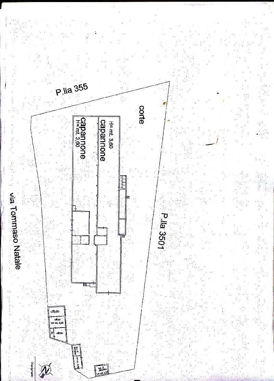 Capannone in affitto a Palermo, 4 locali, zona Zona: Tommaso Natale, prezzo € 3.500 | Cambio Casa.it
