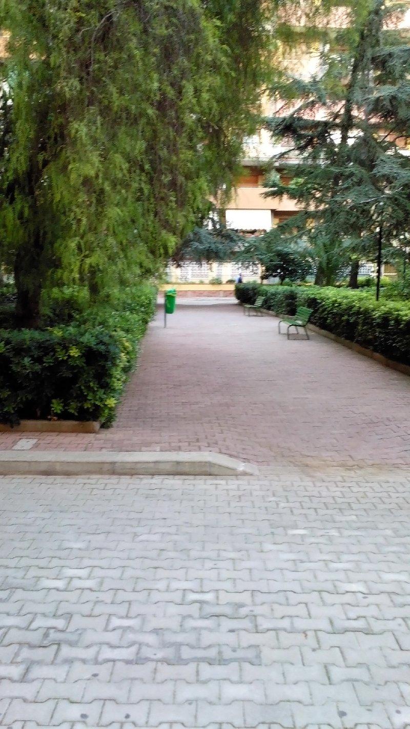 Appartamento affitto Palermo (PA) - 4 LOCALI - 100 MQ