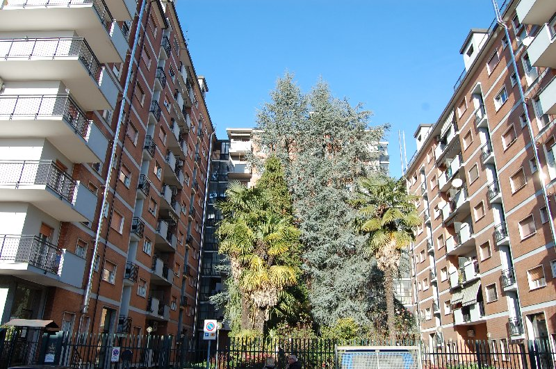 Bilocale Cerro Maggiore Via S. Clemente 47 5