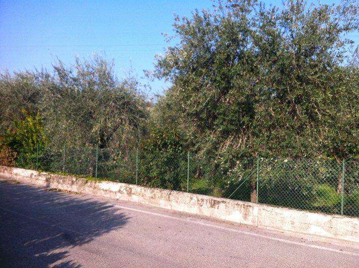 Terreno Edificabile Residenziale in vendita a Puegnago sul Garda, 9999 locali, zona Zona: Raffa, prezzo € 250.000 | Cambio Casa.it