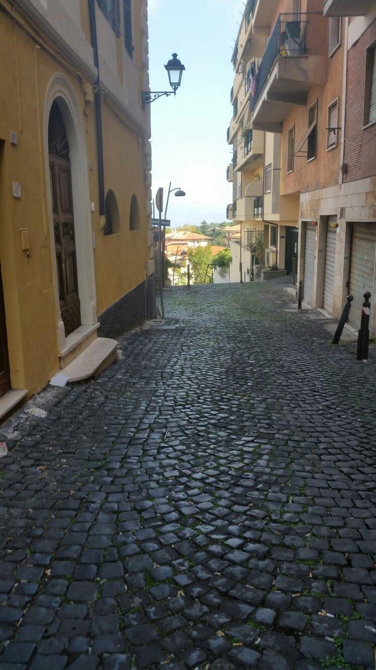Immobile Commerciale in affitto a Frascati, 1 locali, prezzo € 500 | CambioCasa.it